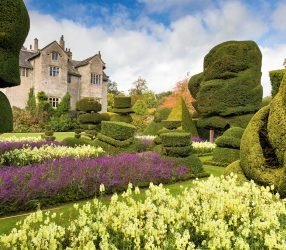 Gartengeschichten von Englands Küste