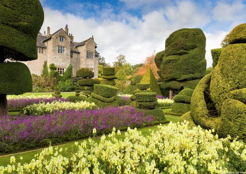 Garden Tales from England's Coast